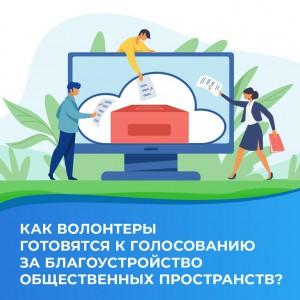 Региональный волонтерский корпус проекта «Формирование комфортной городской среды» готовится к началу голосования за общественные территории для благоустройства.